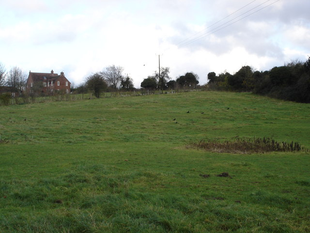 Horse paddock opposite Manor Farm, 6d Handley