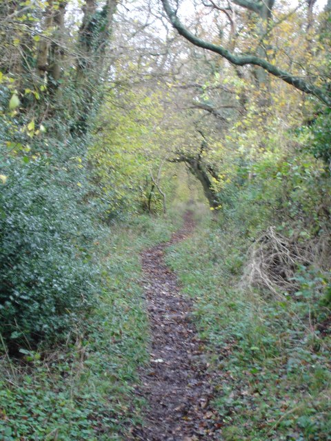 Footpath towards Knighton Wood and Reddish Gore