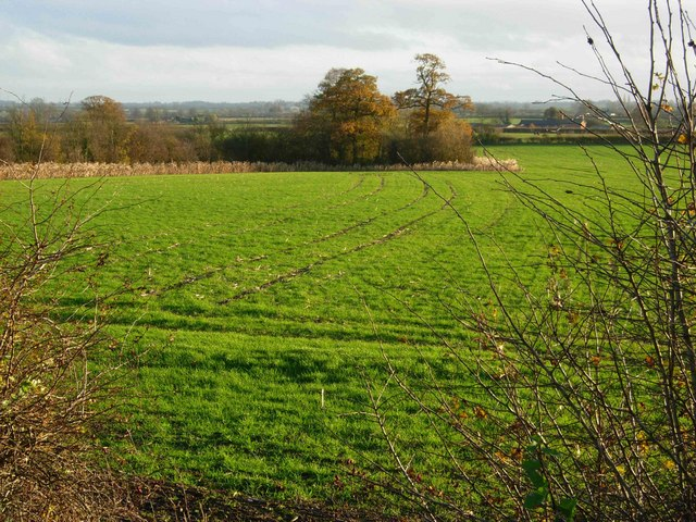 Farmland near Stoney Stanton