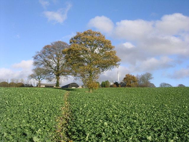 Gorst Hill Farm