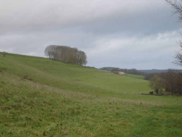 View towards Knowle Hill from Church Bottom