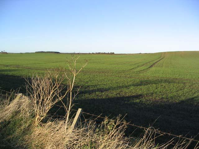 Farmland near Bowsden Moor