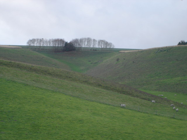 Middleton Hill from Church Bottom