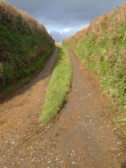 Track near Waye Farm