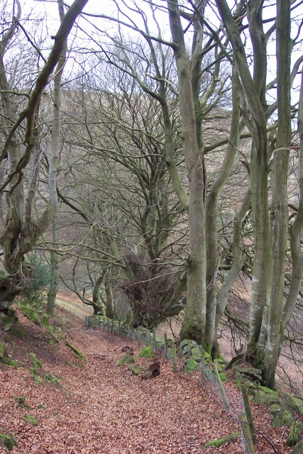 The steep footpath south from The Punchbowl.
