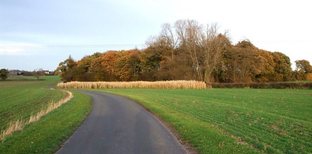 Drive to Grendon House Farm