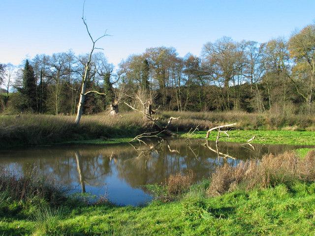 Pool near Vale Royal Locks