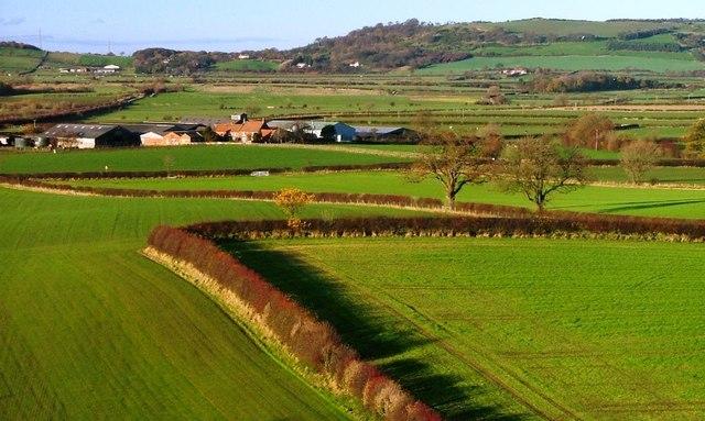 Whitegate Farm