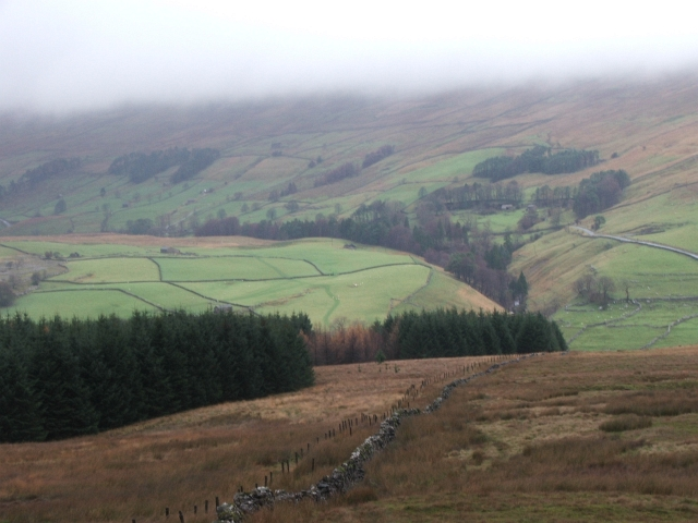 Forestry and Moorland above Beckermonds.