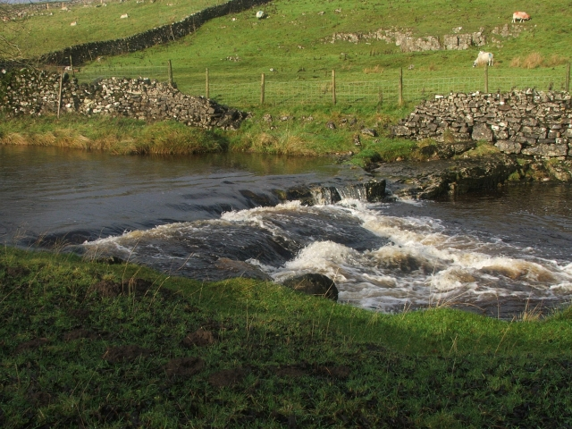Small Rapid on the Wharfe.