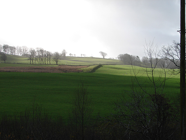 Farmland beside the A4120 road