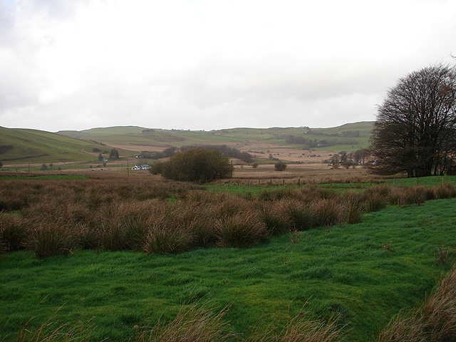 Rough pasture and bog at Nant-Arthur