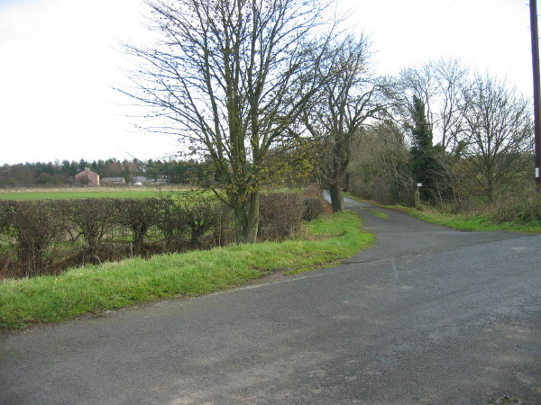 Private drive leading to Heron's Close