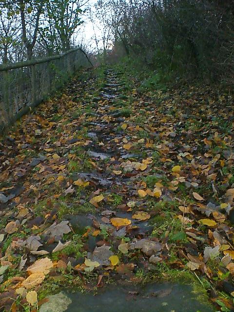 Slippery steps