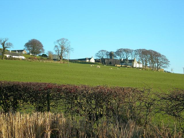 Guiltreehill Farm