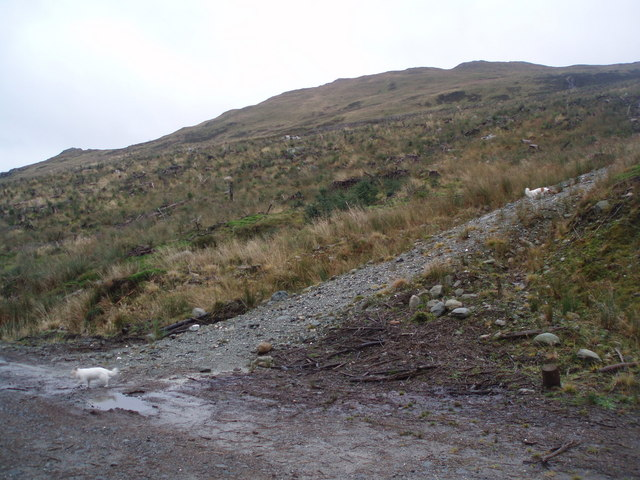 Cleared Hillside