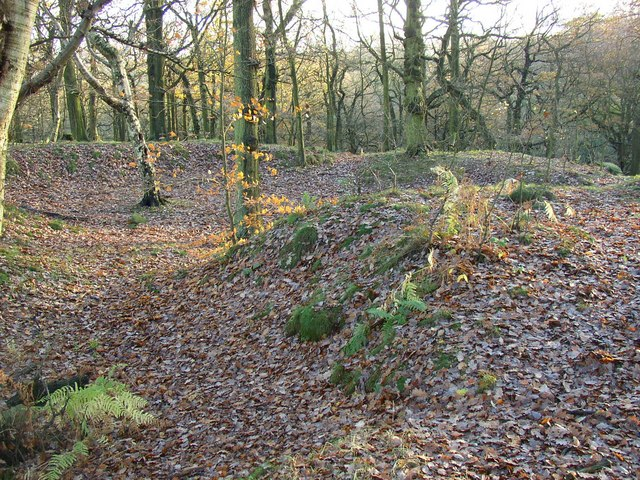 Earthworks in North Cliffe Wood, Shipley