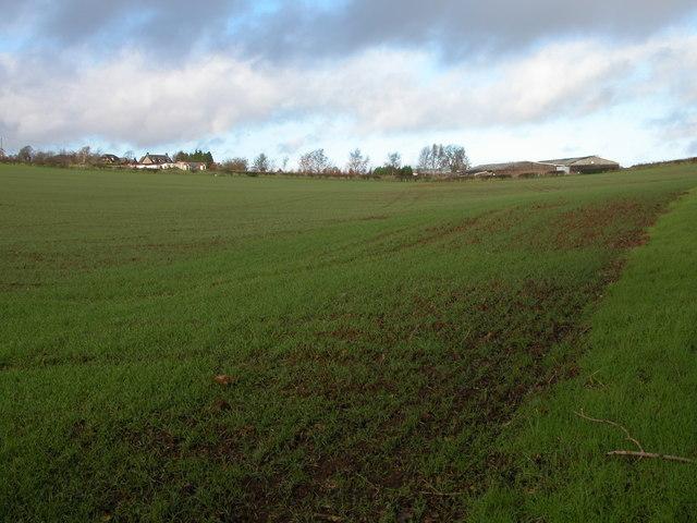 Field beside Park Farm, St Briavels
