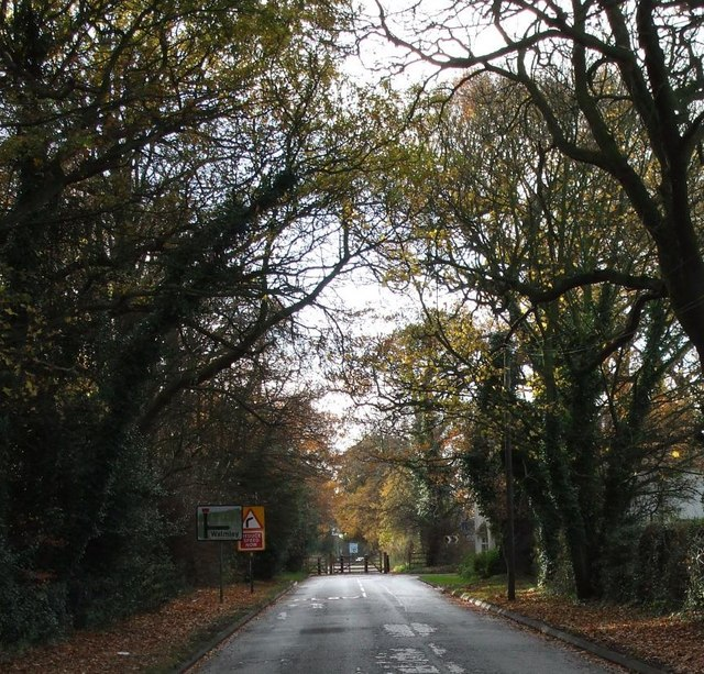 Fox Hollies Road