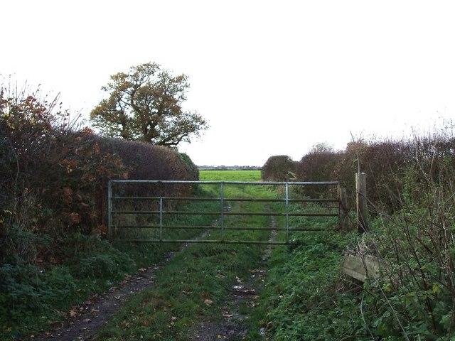 Field Entrance off Portleys Lane
