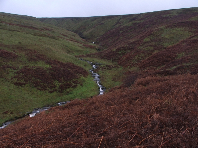 The Top of Hagg Beck.