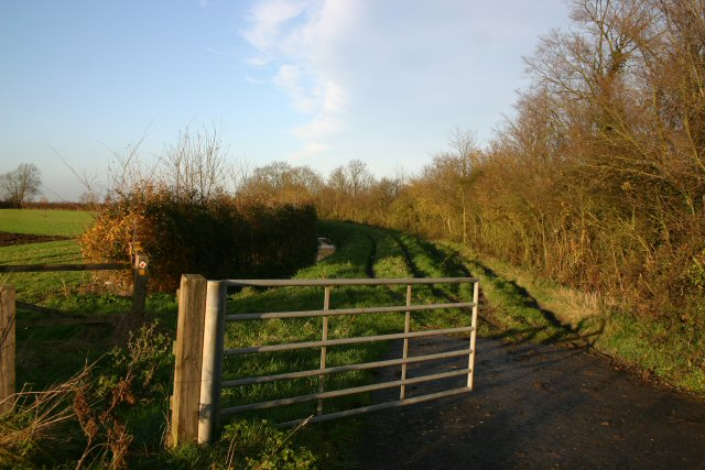 Byway to Common Farm, Witchford