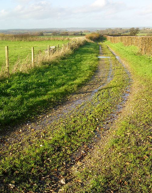 Holtham Lane