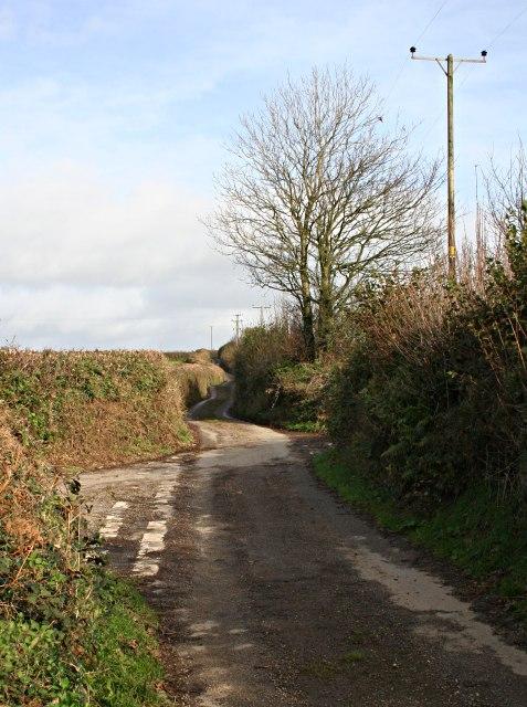 Country Lane near Woodland Farm