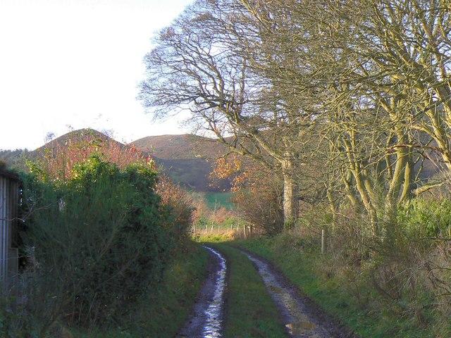 Track west of Glenbran