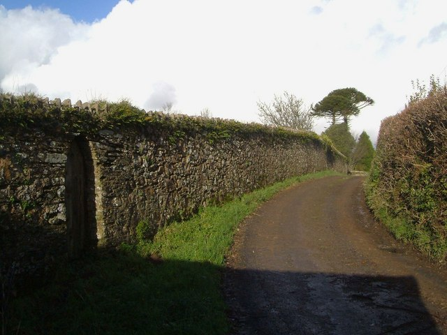 The driveway to Coyton