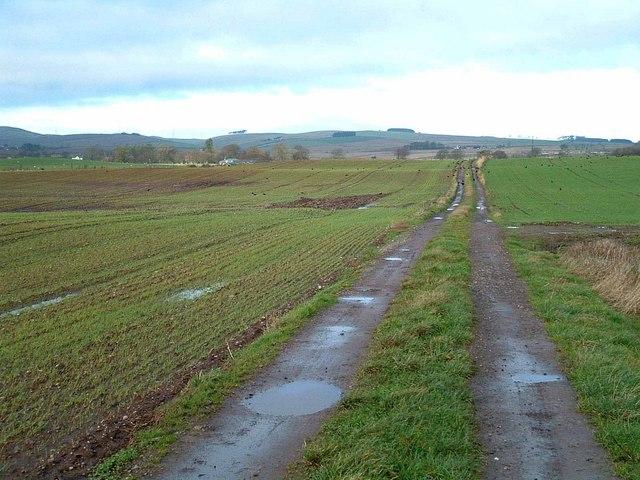 Farm track near Orwell Farm