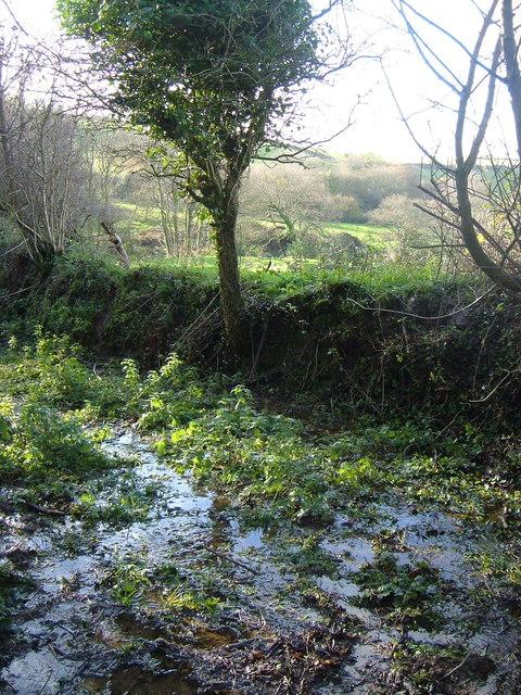 Ermington Footpath 18