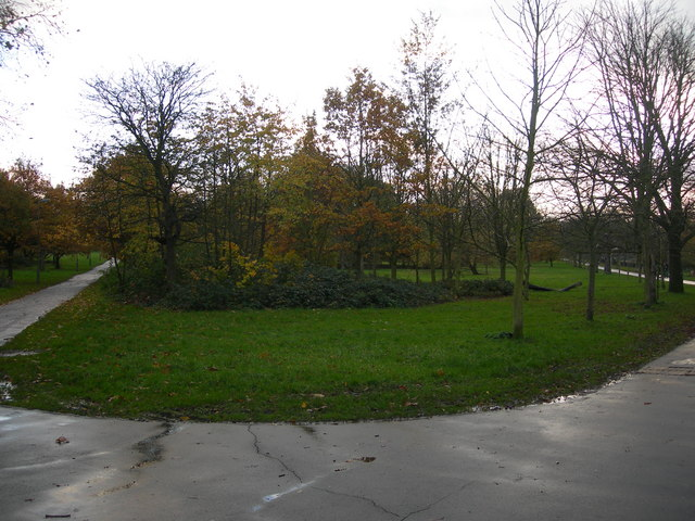 Tooting Bec Common (2)