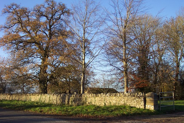Trees by the entrance to Coneygar Farm.
