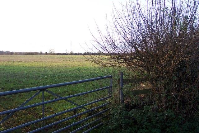 Fields near Ampney Sheephouse.