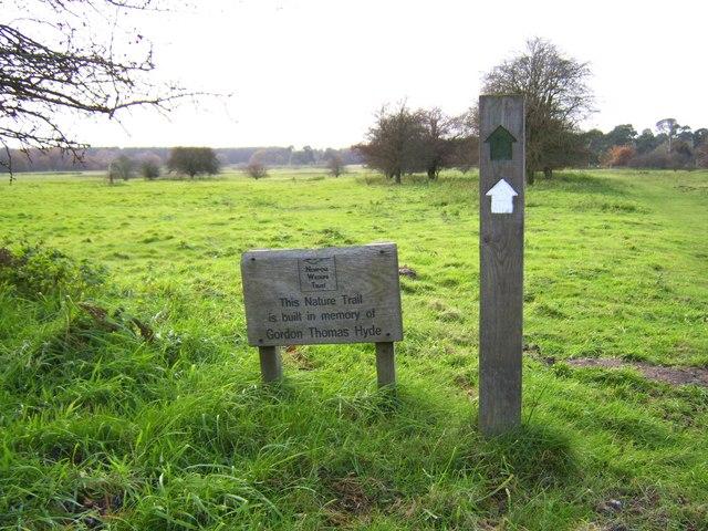East Wretham Heath - nature trail