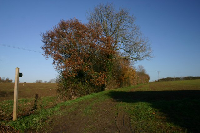 Footpath in Thorpe Morieux