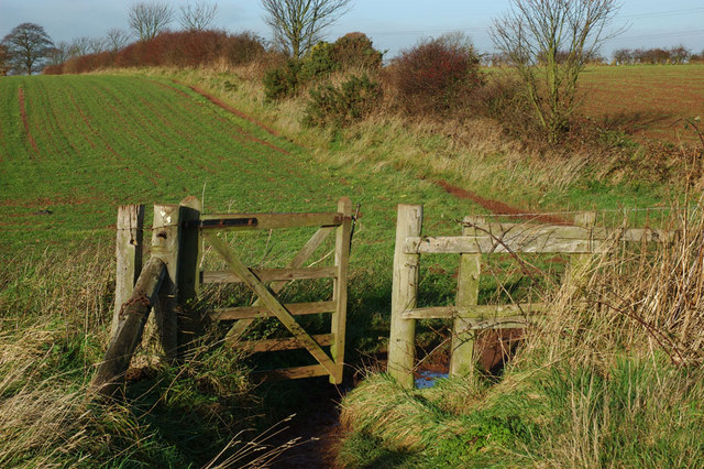 Footpath at Hangman's Stone