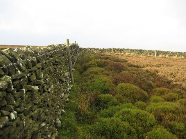 Boundary Wall on Howson Ridge