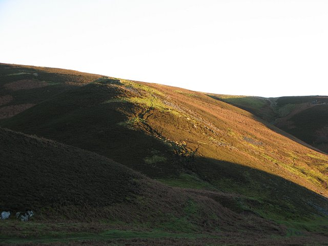 Hill fort and Thorny Cleugh