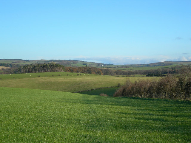 Rolling Farmland
