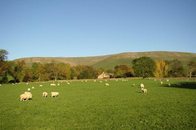 Pasture, Kirkland, Culgaith CP