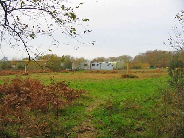 Field Sandleheath Hampshire
