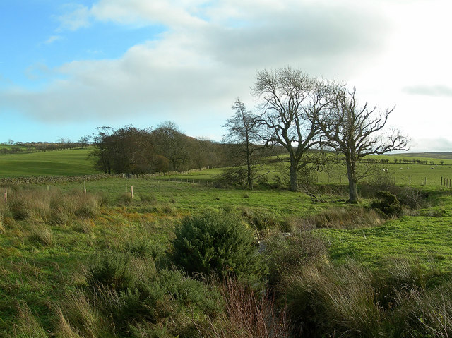 Backglen Burn
