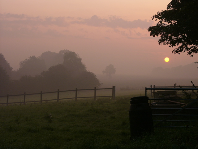 Early morning across the fields at Flixton from Rectory Cottages