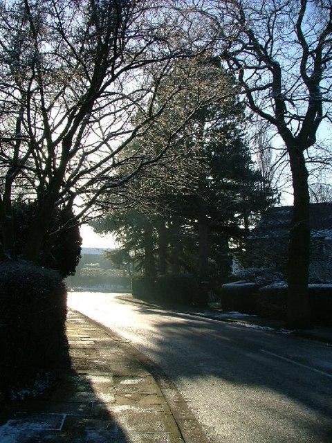 Bramhall Moss lane looking south