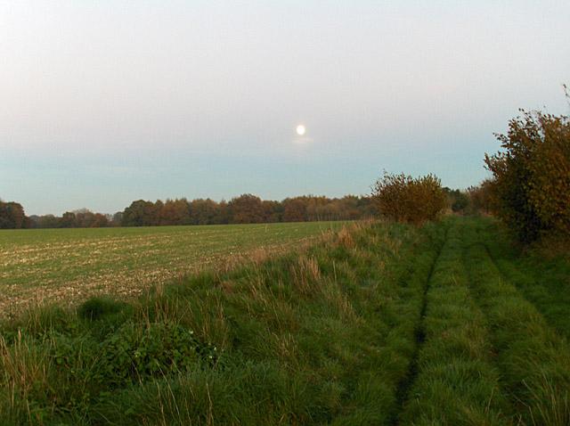 Farmland, Scot's Poor