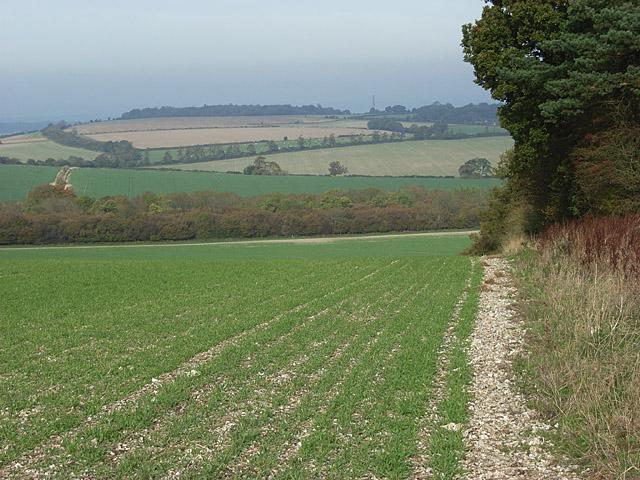 Farmland near Tidcombe