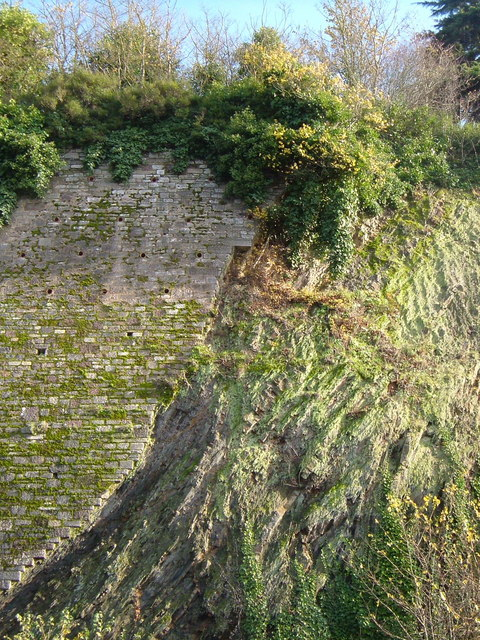 Cliff face, Bonhay Road Cutting, Exeter
