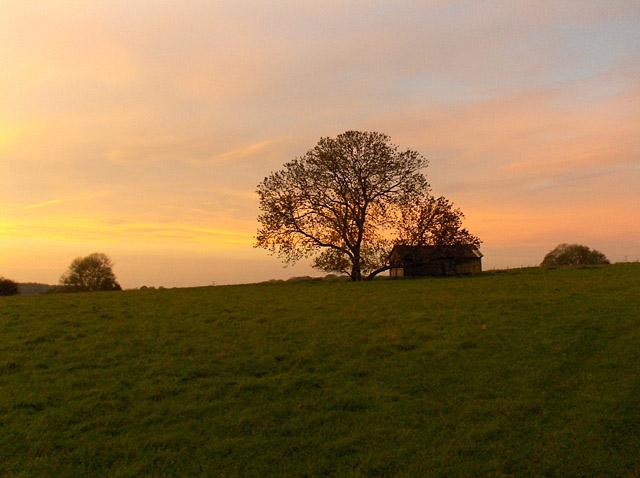 Barn and tree, Chantry
